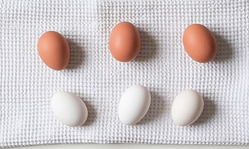 Cage-Free Brown & White Eggs